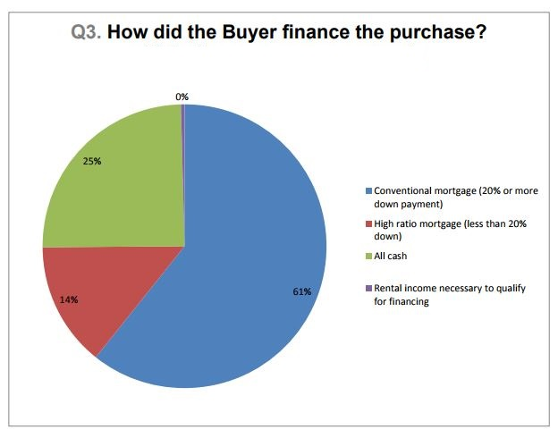 Chart Showing How Real Estate Buyers Financed their Purchase in November 2017